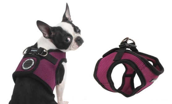 best dog harness / best no pull dog harness